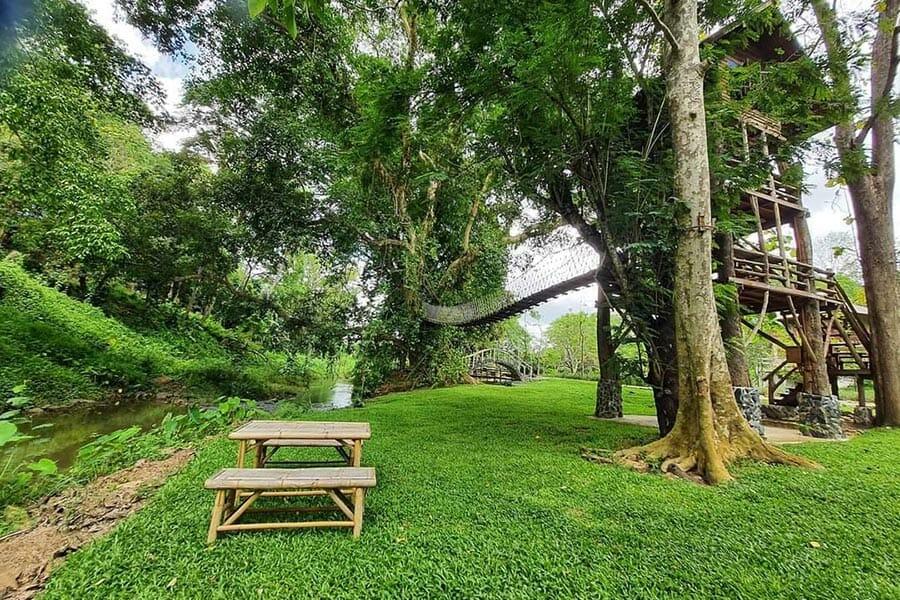 5 คาเฟ่เส้นปางไฮ-เทพเสด็จ เชียงใหม่ นั่งชิลล์ถ่ายรูปฉ่ำกลางธรรมชาติ!