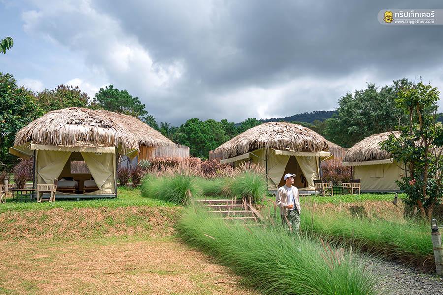 Bamboolake01
