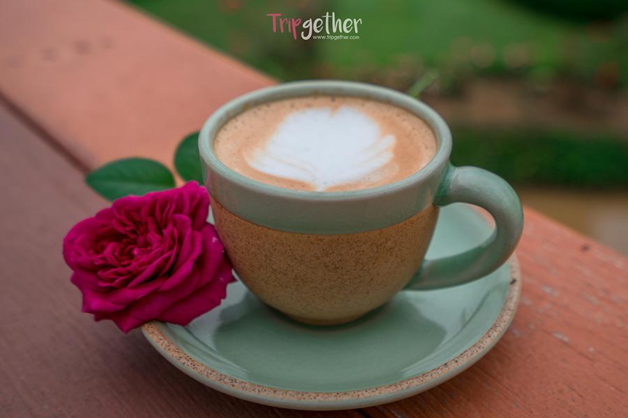 Coffeeteasapanpai-2