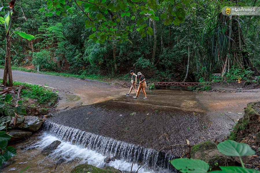 Maekampongwaterfall-50