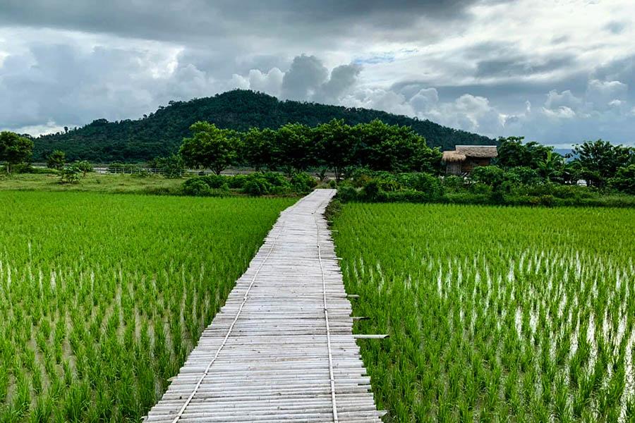 Mok Rim kong Resort3