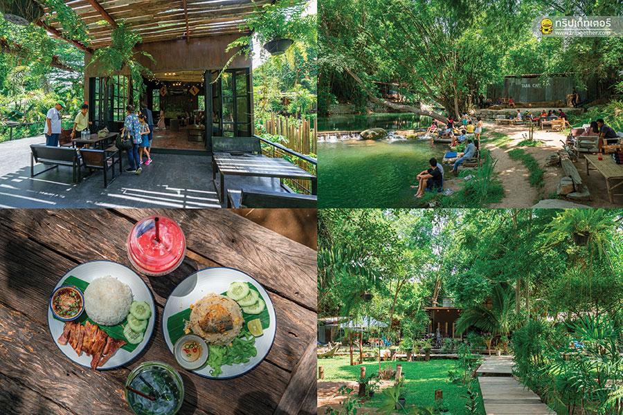 Tara-Cafe