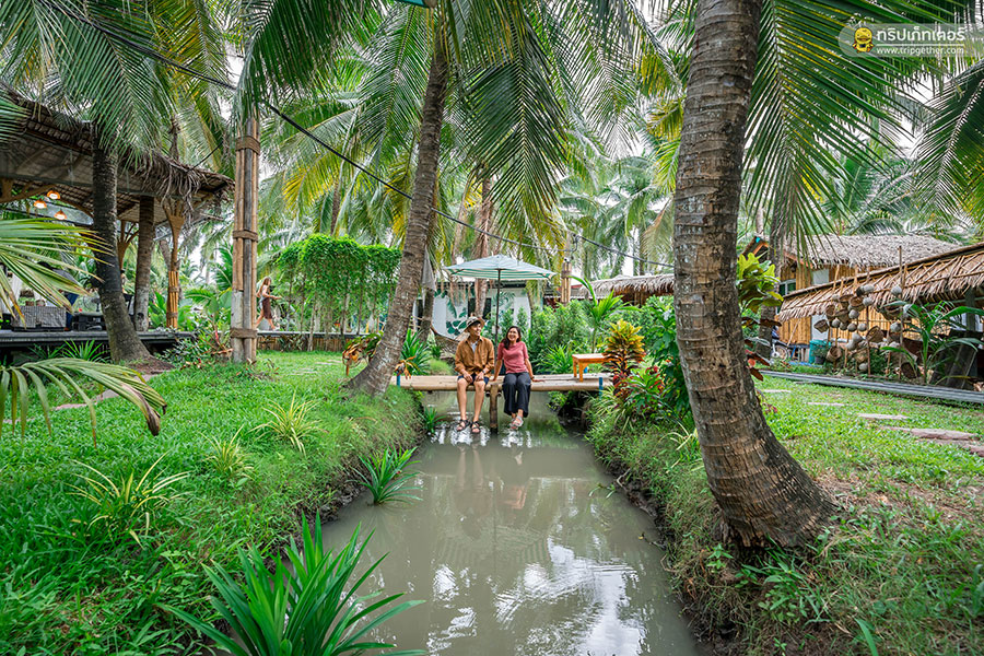 The_story_of_coconut-61