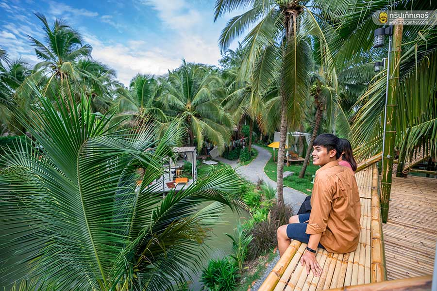 The_story_of_coconut001