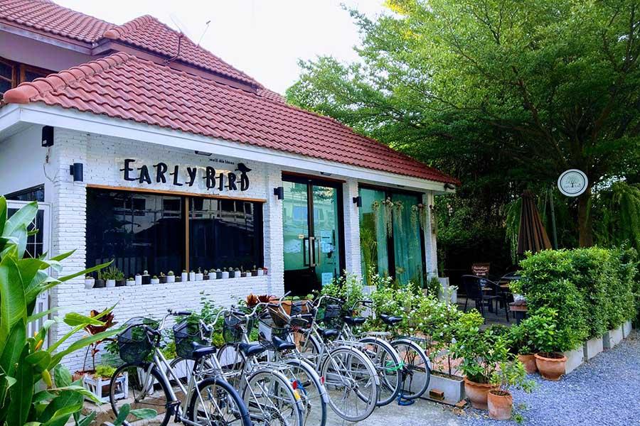 earlybirs_1