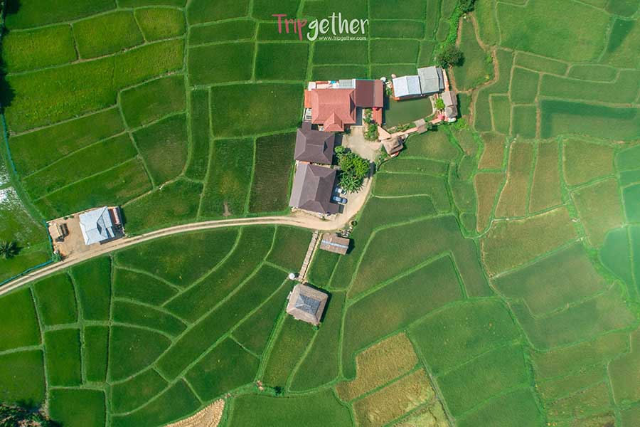 farmer School-47