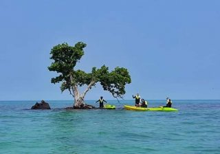เกาะขายหัวเราะ- เกาะกระดาด
